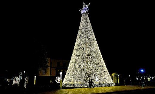 Natal em Matosinhos